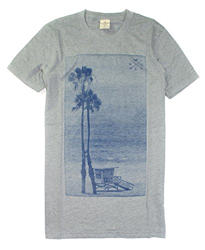 Hollister Men's Soft Graphic Tee HOM-18 (Medium, Green 1447-013)