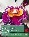 Orchideen für Fortgeschrittene: Expertenwissen zu über 80 Gattungen