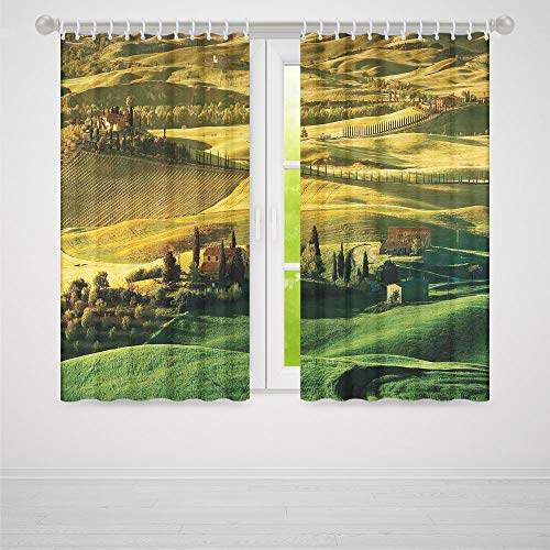 YOLIYANA Decor Collection,Tuscan,for Living Room,Peaceful Landscape of Pienza Tuscany Vineyard Trees Meadow Hill Ancient House2 Panel Set,103W X 62L Inches