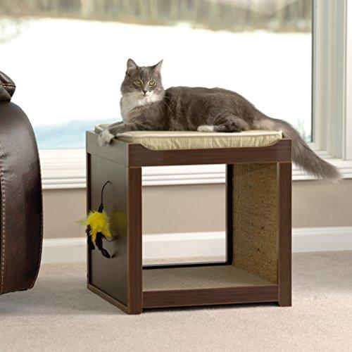 Sauder 416820 Modern Interactive Pet Cube