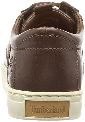 Baskets Homme Foncé Marron Timberland Leather Basses Oxford awqAAEp