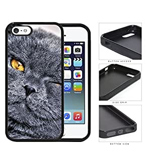 Cute Black Gray Cat Eye Wink Yellow Eyes Hard Rubber TPU Phone Case Cover iPhone i5 5s