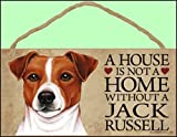 A house is not a home without Jack Russell Terrier - 5