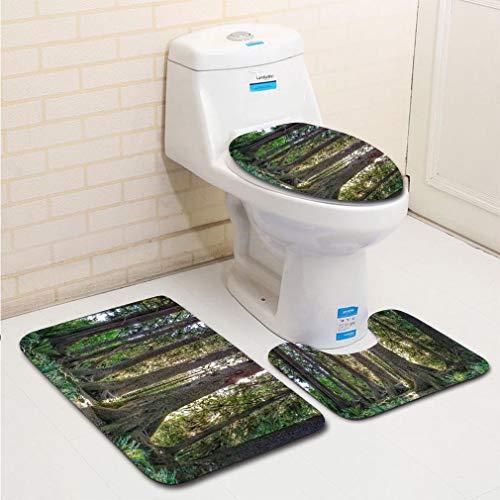 MTSJTliangwan 3-Piece Bathroom Set, Bathroom Rug + Contour pad + lid Toilet seat, HOH Rainforest Olympic National Park Washington Sitka Hemlock Nursing Log Comfortable Flannel Rug