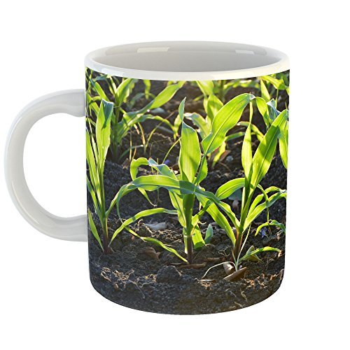 Westlake Art - Plant Crop - 11oz Coffee Cup Mug - Modern Picture Photography Artwork Home Office Birthday Gift - 11 Ounce (6884-6FB27) (Starter Compost Mulch)