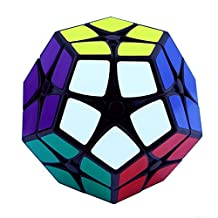 Ting-W® Shengshou 2x2 12 color Megaminx Puzzle stickerless speed twisty magic cube puzzle education toys
