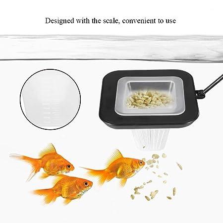 Alimentador del tanque de peces de acuario Gusano Rojo Alimentador del tanque de peces de acuario Alimentador de anillo flotante Alimentación tubular Sucker ...