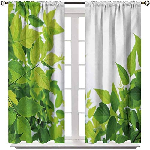 Blackout Curtains and Drapes Plant Window Drapes Curtain Beautiful Photo of Fresh Leaves Spring Season Birth of Nature Happiness Ecology