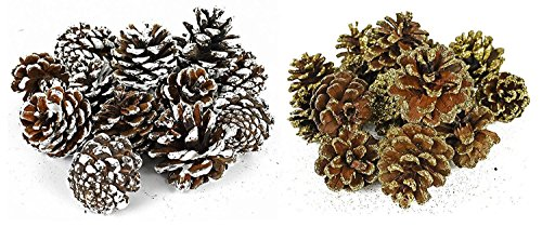 Black Duck Brand Set of 30 Assorted Pinecone Christmas Table Scatter Glitter Frosted WinterThemed Pinecones Perfect for Decorating for The Holiday Season