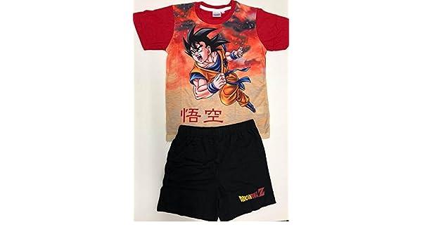 pijama infantil goku- dragon ball z talla 14: Amazon.es: Ropa y accesorios