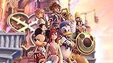 Kingdom Hearts 2 3 Sora Organization XIII 13 Nice Silk Fabric Cloth Wall Poster Print (43x24inch)