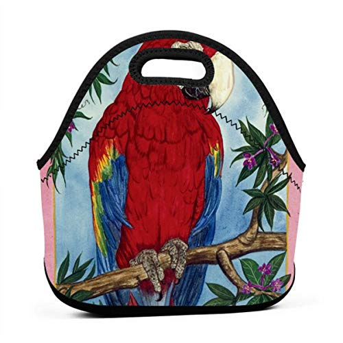 (Sunmoonet Parrot Perch Reusable Lunch Bag Lunch Box Polyester with Zipper Shoulder Strap)