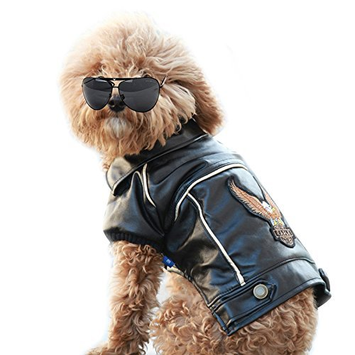 (Cuteboom Dog Winter Coat Pu Leather Motorcycle Jacket for Dog Pet Clothes Leather Jacket, Waterproof (M))