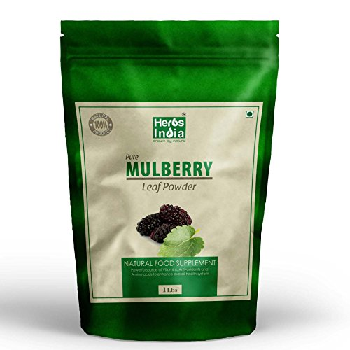 mulberry-leaf-extract-mulberry-leaf-powder-all-natural-raw-herb-super-food-supplement-1-lb-herbs-ind