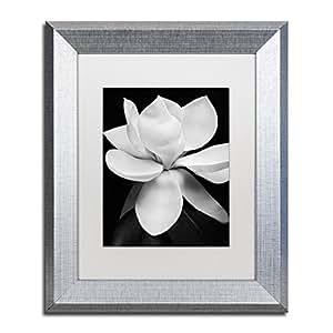 Trademark Fine Art Magnolia by Michael Harrison, White Matte, Silver Frame 11x14-Inch