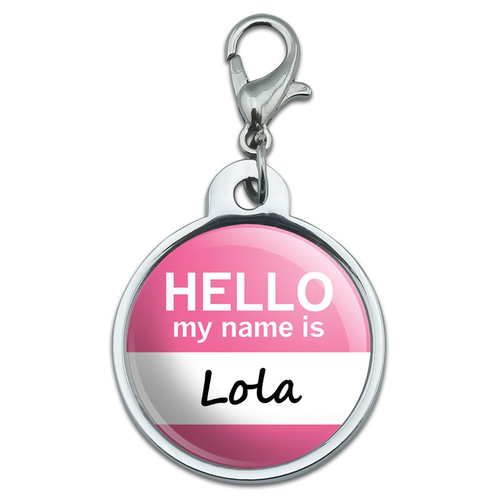 Graphics and More Chrome Plated Metal Small Pet ID Dog Cat Tag Hello My Name is LI-MAK