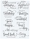 Penny Black 30-350 N/A clear Stamps 5''X7''-Sentiment Collection