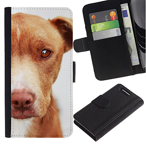 LASTONE PHONE CASE / Lujo Billetera de Cuero Caso del tirón Titular de la tarjeta Flip Carcasa Funda para Sony Xperia Z1 Compact D5503 / Mutt Mongrel Dog Brown Canine