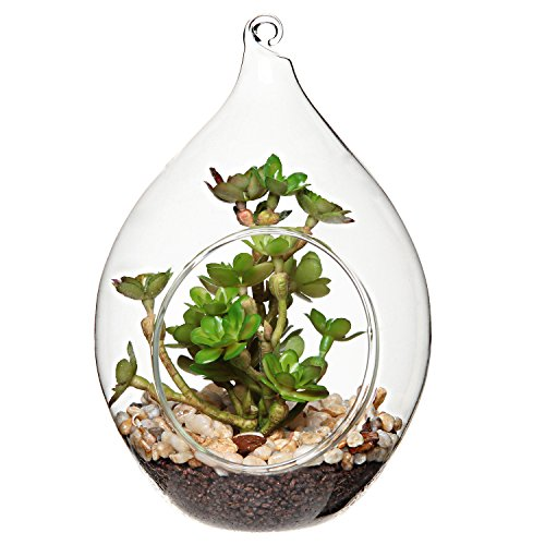 MyGift Teardrop Design Hanging Clear Glass Globe Ornament/Artificial Succulent Plant Display Terrarium Vase (Glass Teardrop Vases Hanging)