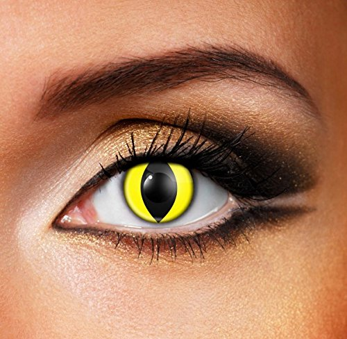 Women Multi-Color Cute Charm and Attractive Fashion Contact Lenses Cosmetic Makeup Eye Shadow Yellow Cat Eye 2 with case by Dream TM
