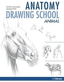 Anatomy Drawing School Animals 2 By Andras Szunyoghy 2015