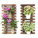 Wall Planter – 2 Pack Wooden Hanging Planter for
