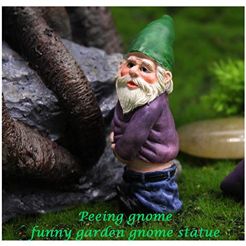 Fairy Garden Accessories,Say Hello to My Little Friend Gnome-Funny Garden Gnome Kit of 4pcs for Fairy Garden or Home Decoration