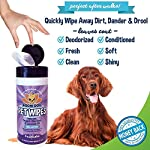 Pet-Grooming-Wipes-All-Natural-100-Cotton-Lavender-and-Organic-Aloe-Large-Wet-Thick-Deodorizing-and-Cleaning-Best-for-Dog-Cat-Paws-More