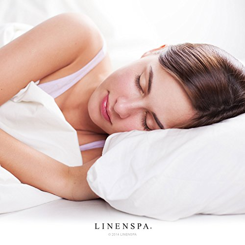 LINENSPA Premium Smooth Fabric Mattress Protector - 100% Waterproof - Hypoallergenic - Top Protection Only - Vinyl Free - Queen