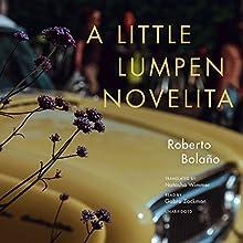 A Little Lumpen Novelita Audiobook by Roberto Bolaño, Natasha Wimmer Narrated by Gabra Zackman