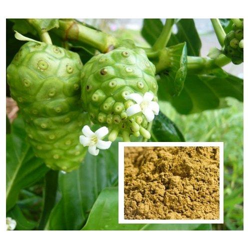 100 грамм. / 3.52oz. Morinda Citrifolia порошок, Tahitian Noni, индийская шелковица, пляж шелковицы из Таиланда
