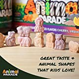 NaturesPlus Animal Parade Source of Life Gold