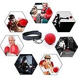 GRACETOP Boxing Ball Boxing Reflex Ball Training
