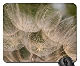 Mouse Pad - Oat Root Tragopogon Porrifolius Wild Flower Summer