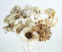Plawanature Set of 21 Mixed Sola Wood Flower with Reed Diffuser for Home Fragrance Aroma Oil.