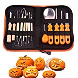 SAVORLIVING Pumpkin Carving Tools Kit Set of 13 Tools & 1 Storage Bag, Stainless Steel Blade Halloween DIY Tool Jack-O-Lanterns Pumpkins Party Decorations