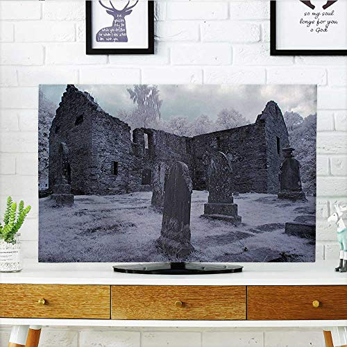 Auraisehome Protect Your TV Collection Old Gothic Cemetery Church Tomb and Tombstone Mysticism Spooky Forest Style Cloudy Protect Your TV W19 x H30 INCH/TV 32
