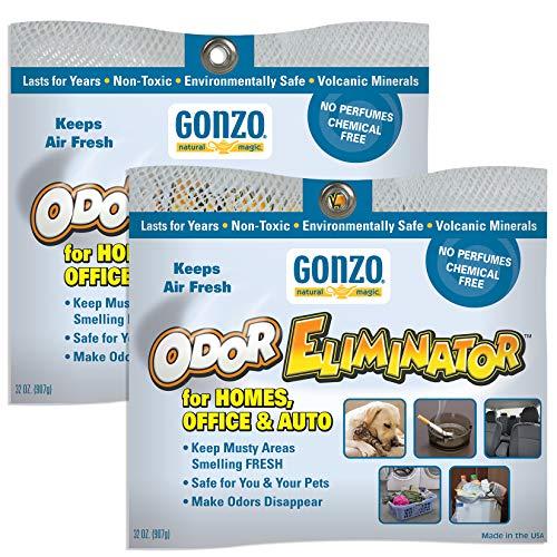 Gonzo Odor Eliminating Rocks for Homes - 2 Pack (Charcoal Lava Rocks)