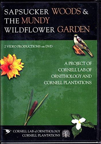 Wildflowers Natural Wood - Sapsucker Woods & the Mundy Wildflower Garden