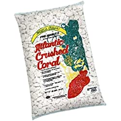 Worldwide Imports AWWA1035 Atlantic 4-Crush Coral, 20-Pound