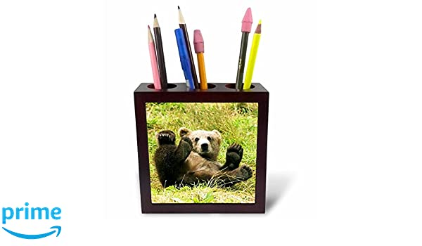 3dRose ph/_43744/_1 Baby Grizzly Bear-Tile Pen Holder 5-Inch