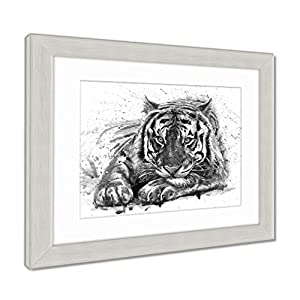 Ashley Framed Prints Tiger Animals Watercolor Wild Cat Illustration Graphic Wildlife, Wall Art Home Decoration, Black/White, 30x35 (frame size), Silver Frame, AG6580987