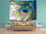 KLOLKUTTA Watercolor Wall Hanging Tapestry, Traditional Large Fabric Floral Ornaments Meditation Spa Artwork Bed sheet Sofa Cover Living Room Decor (Peacock Feather with Eye Birds, 80 X 60 Inch)