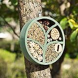 "Goose Creek 11"" Woonden Multi Habitat Insect"