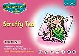 Read Write Inc. Phonics: Pink Set 3 Storybooks: Scruffy Ted