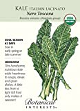 Italian Nero Toscana Kale Seeds - .50 grams - Organic - Botanical Interests by Hirts: Seed; Vegetable