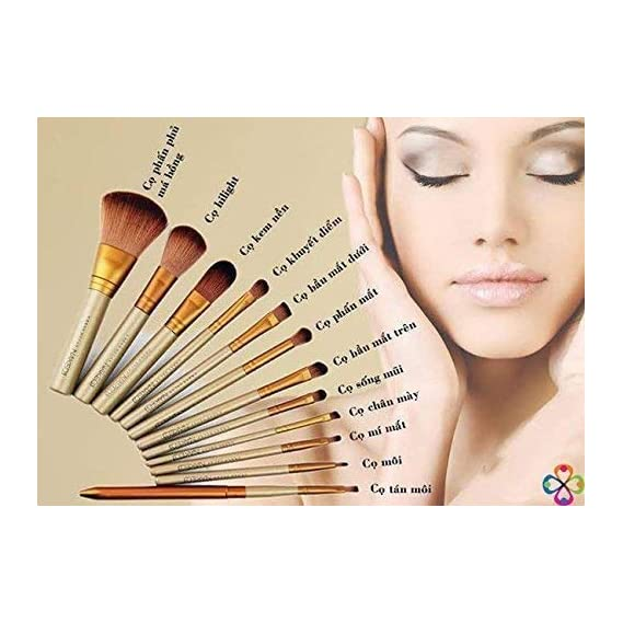 Ronzille Naked 3 Makeup Brushes Kit with Storage Box (Golden) - Set of 12