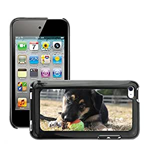 Hot Style Cell Phone PC Hard Case Cover // M00108428 Puppy Dog Cute Pet Animal Adorable // Apple ipod Touch 4 4G 4th