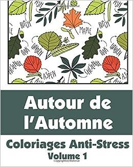 Coloriage Anti Stress Automne.Amazon Fr Autour De L Automne Coloriages Anti Stress Volume 1