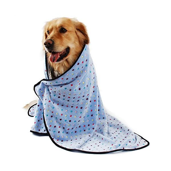 PAWZ Road Pet Dog Blanket Fleece Fabric Soft and Cute 4 Colors 4 Sizes 3